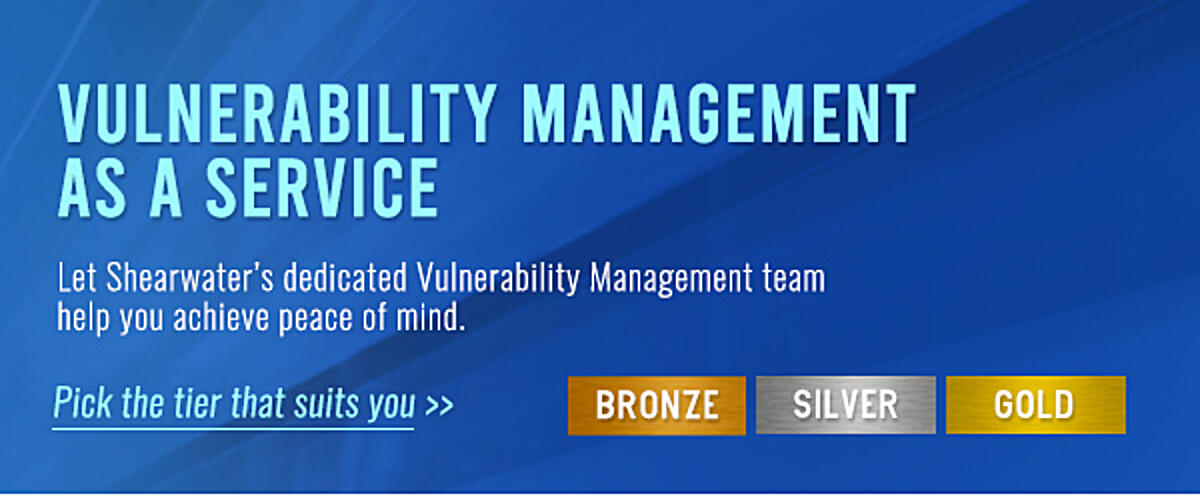 Vulnerability Management as a Service